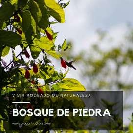 LOTES CAMPESTRES CURITI SANTANDER BOSQUE DE PIEDRA