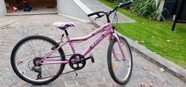 Bicicleta marca Rally rodado 24 color rosa mpecable