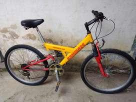 Vendo Bicicleta Rin 24