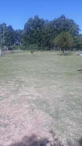 Terreno de 17 x 42