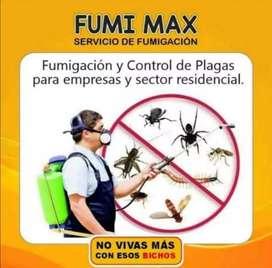 Exterminacion de plagas