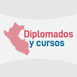 DIPLOMADOS - SALUD