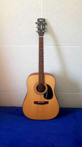 Guitarra Acuatica Cort AD810