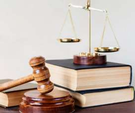 Asesoría y procesos judiciales
