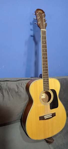 Guitarra con funda marca aria