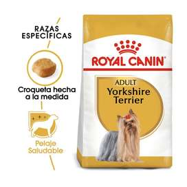 Delivery Royal Canin Yorkshire Adt 7.5kg