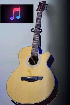 Guitarras Acustica Nueva