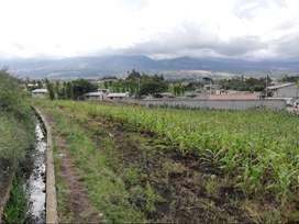 Vendo Terreno 3100 M2 en San Roque