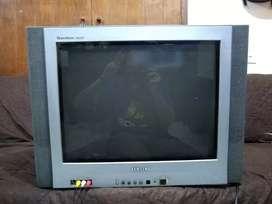 "Televisor CRT 24"" (SAMSUNG Tantus Flat)"