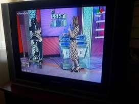 TV 29 pulgadas PANASONIC pantalla plana modelo tc29 fx 30 la