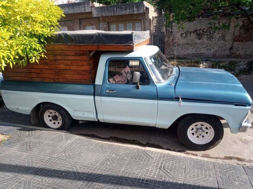 Ford F100 de luxe 0