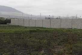 Terreno en Las Delicias de 500 Y 250 M2