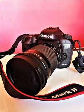 Canon Eos 7d Mark Ii + Lente Sigma 18-300mm F: 3.5-6.3 +flash