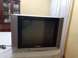 TV Panasonic  21 pulgadas + DVD Panasonic