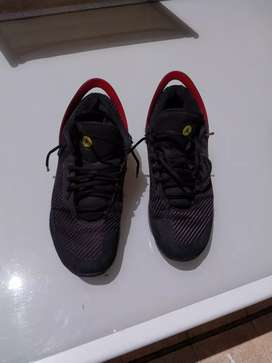 Zapatillas jordan basket