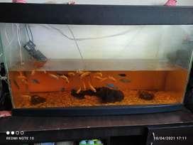 Vendo acuario completo