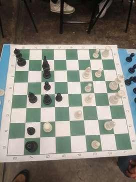 Profesor de ajedrez, matemáticas y física