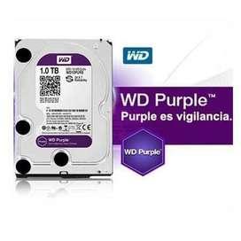 Disco Duro Western Digital Purpura 1TB