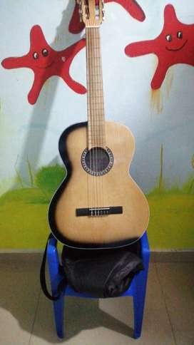 Guitarra Miche