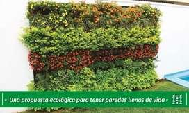 Jardines Verticales en Córdoba BIEN VERDE