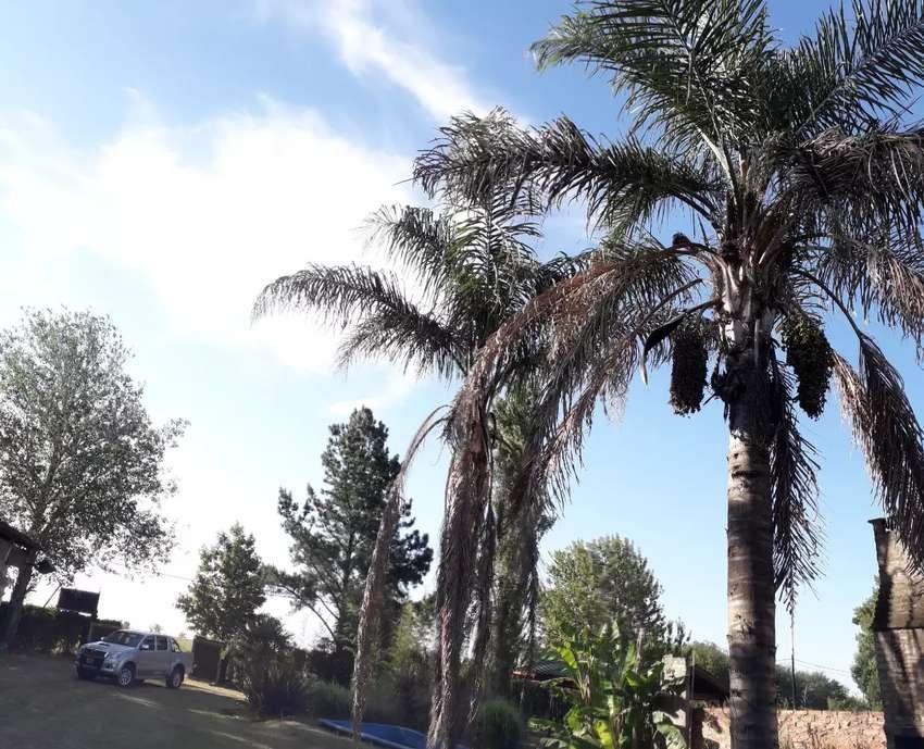 Casa de 2 plantas ubicada en Coronel Domínguez excelente ubicación barrio abierto Santa Clara a 20 min de Rosario 0