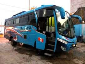 Bus minibus hino