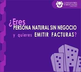 CONTADOR | ESTUDIO CONTABLE | MESA DE PARTES VIRTUAL SUNAT | EMISIÓN DE FACTURAS