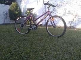 Bicicleta seiza rodado 26
