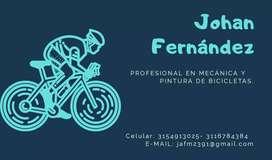 Mecánica y pintura de todo tipo de bicicletas alta y baja gama