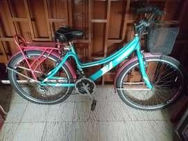 Bicicleta playera marca Rhino