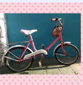 Bicicleta Aurorita Plegable Rod 16 o CANJE ROD 26