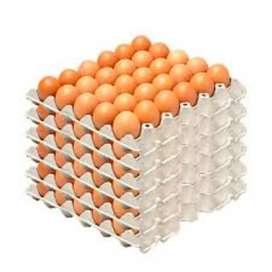 Cubetas de huevos grandes entrega a domicilio