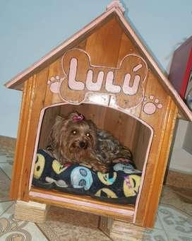 Casa madera perro pequeño