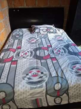 Vendo una cama doble y una sencilla