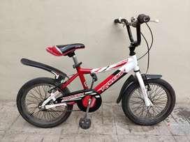 Bicicleta Raleigh Rodado 16  Mxr