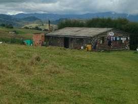 Vendo Hermosa Casa Finca Agropecuaria