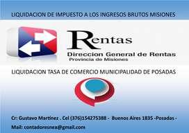 Liquidación Ingresos Brutos y Municipalidad Contador Publico