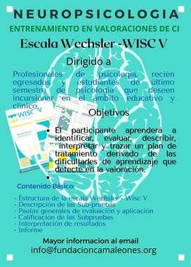 Entrenamiento en WISC V Psicólogos