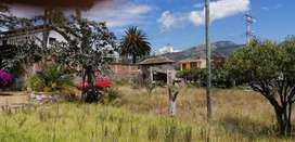 Vendo terreno en La Morita, Tumbaco