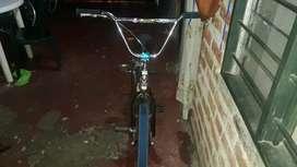 Bicicleta Gw Radius, Info al int