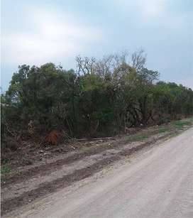 Terreno en Paraná 2 Hectáreas en Comodato