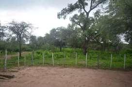campo de 100 hectáreas sobre Ruta provincial