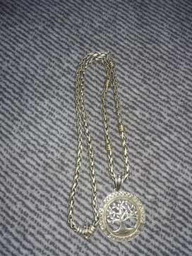 Vendo cadena de plata y oro con dije de plata
