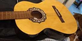 Oferta Guitarra Fonseca