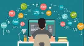 Se Necesita Urgente desarrollador Web