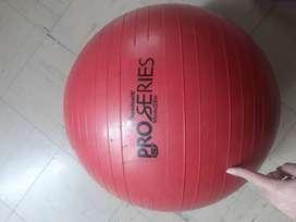 Bola de gimnasia y ejercitador para brazos y piernas