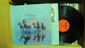 Bob Seger And The Silver Bullet Band - Against The Wind  Contra el viento - VINYL ARG