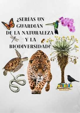 Asesorias escolares, ciencias naturales y biologia, avistamiento de aves