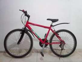 Bicicleta ring 20.