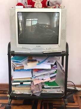 Se vende TV+PEDESTAL
